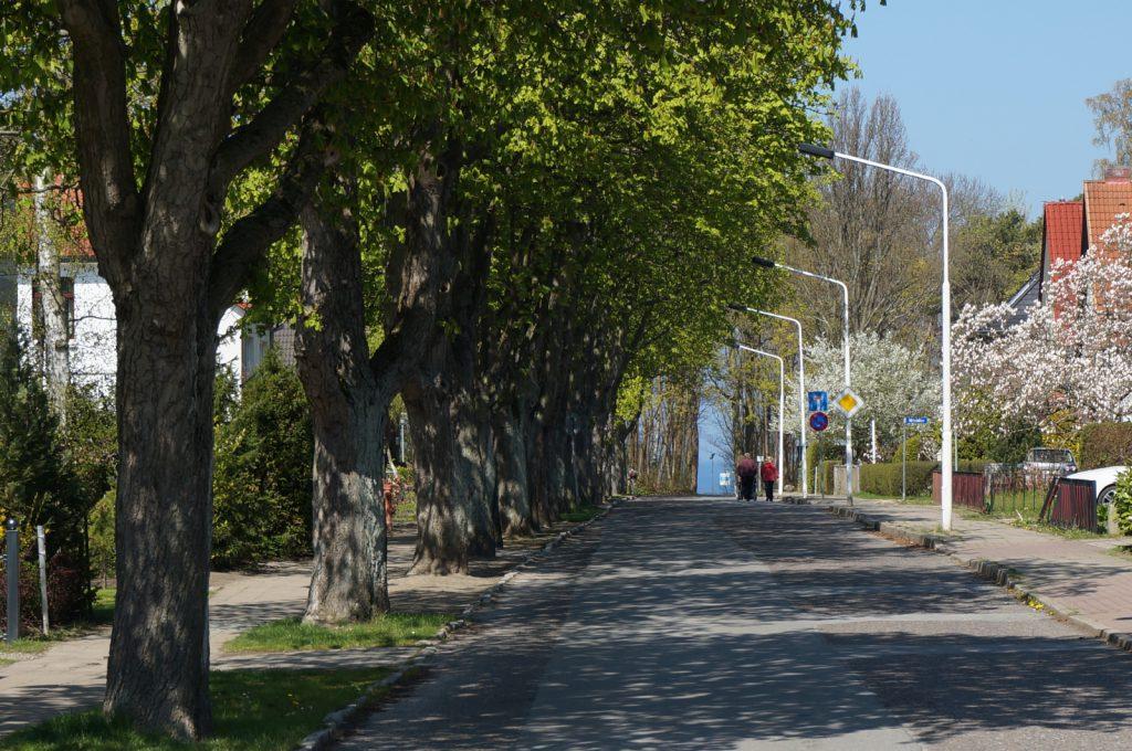 Kastanienallee in Rerik an der Ostsee