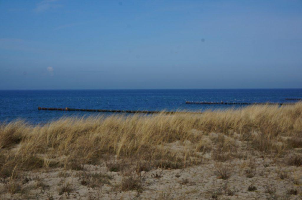 Mai an der Ostsee in Rerik