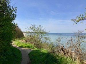 Blick von der Steilküste in Rerik an der Ostsee