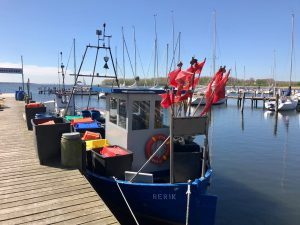 Fischerboot in Rerik auf dem Salzhaff